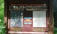 Parco_Boschi_di_Carrega_10_Gela.jpg