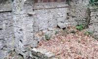 Parco_Boschi_di_Carrega_16_Gela.jpg