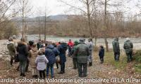 Festa-Albero-200-Gela-Parma.jpg