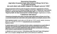 _comunicato_I_Testimoni_dei_Boschi.jpg